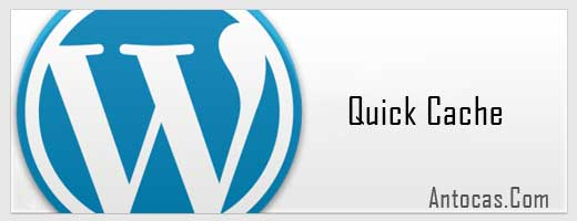 acelelar wordpress